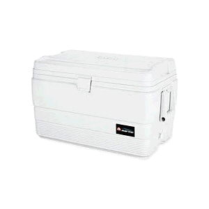 Where to find ICE COOLER, 54 QT in Oakland